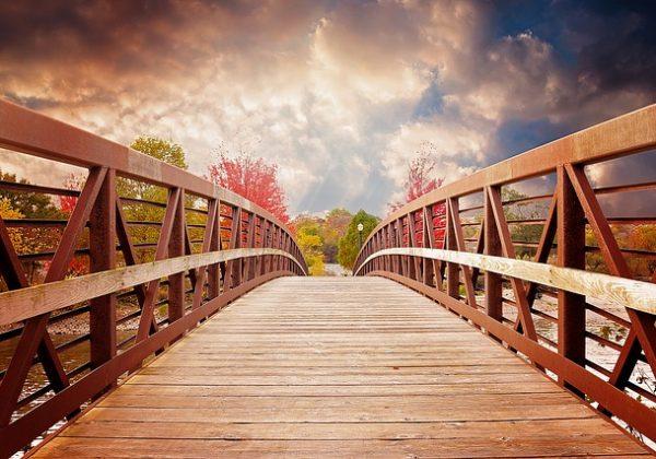 bridge-1385938_640